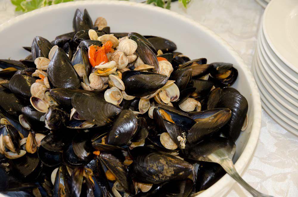 Cucina di mare pesce fresco Ristorante Hotel Mexico Bellaria
