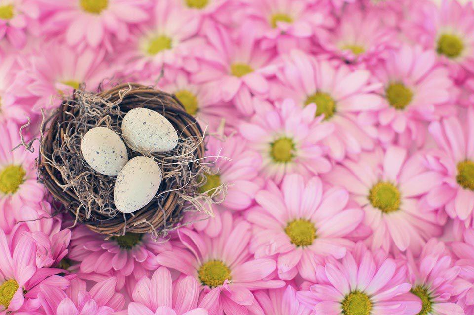 Hotel Bellaria Offerta Pasqua
